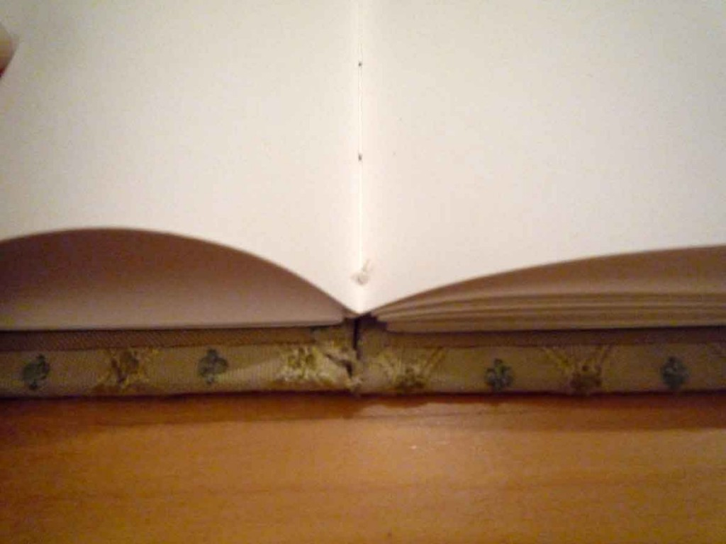 Coptic binding (spread)