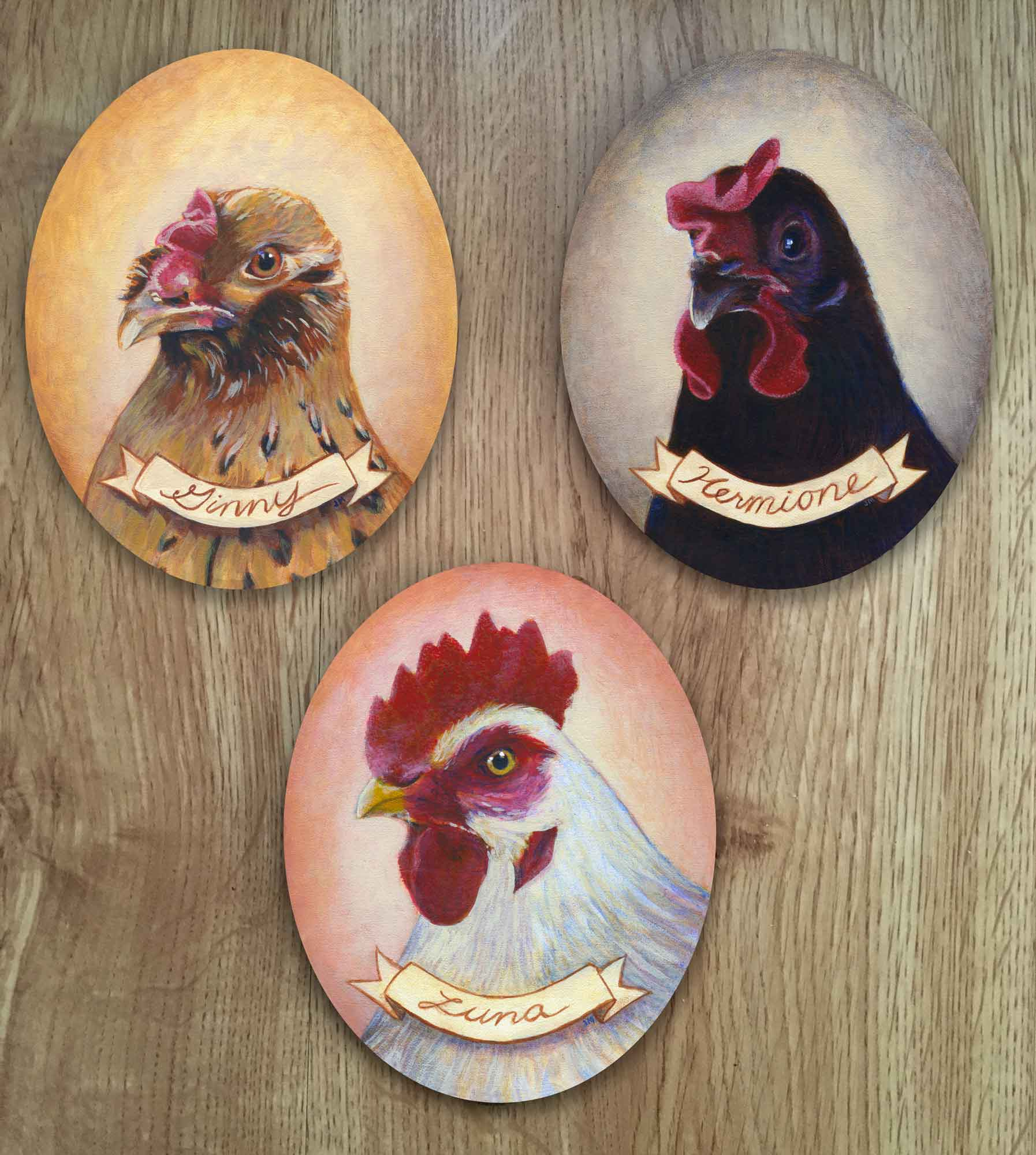 "Chicken portrait trio • 8"" x 10"" each"